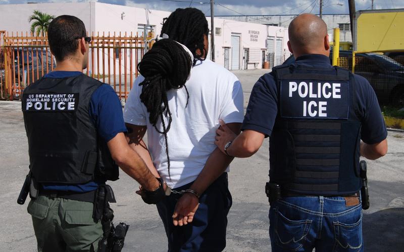Home Office Deportation Jobs