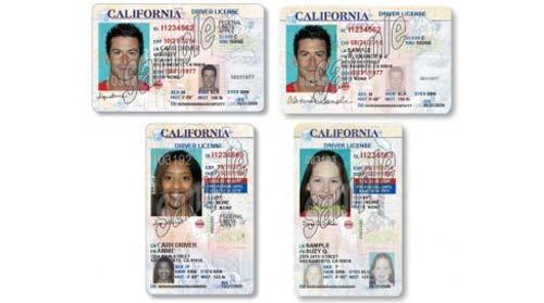 CA Driver License